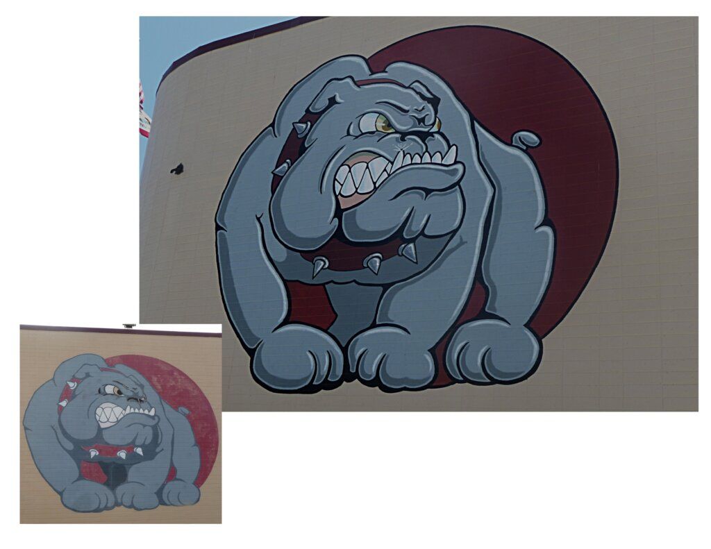 custom school signs San Jose high gym mascot mural painting bulldog close up