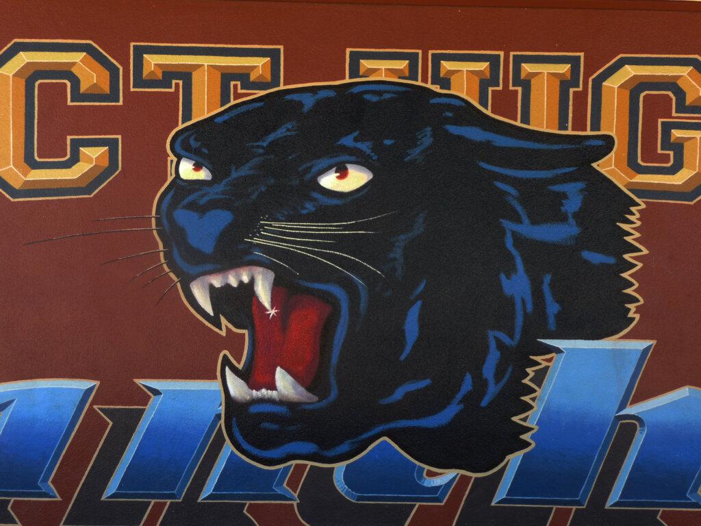 custom school signs Saratoga prospect mascot mural painting